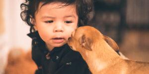 Ventajas de tener mascotas y bebés en casa