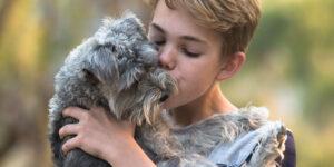 El Coronavirus en perros y gatos