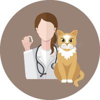 Microchip para mascotas en Hospital Veterinario Agromédica