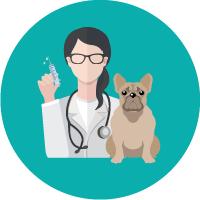 Vacunación perros y gatos en Hospital Veterinario Agromédica